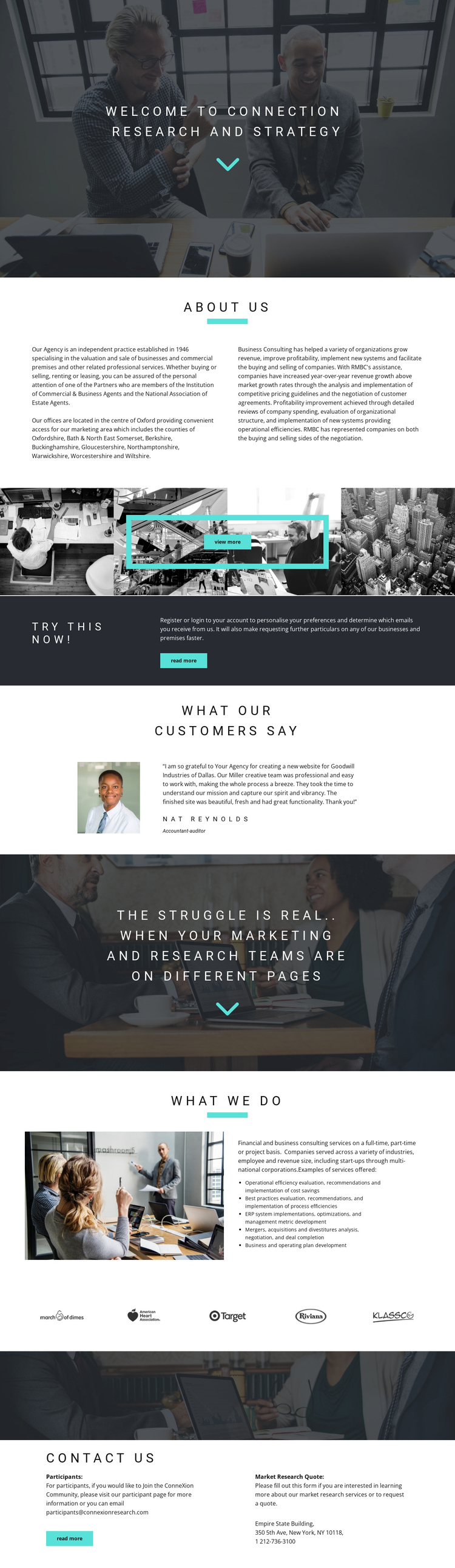 Development strategy One Page Template