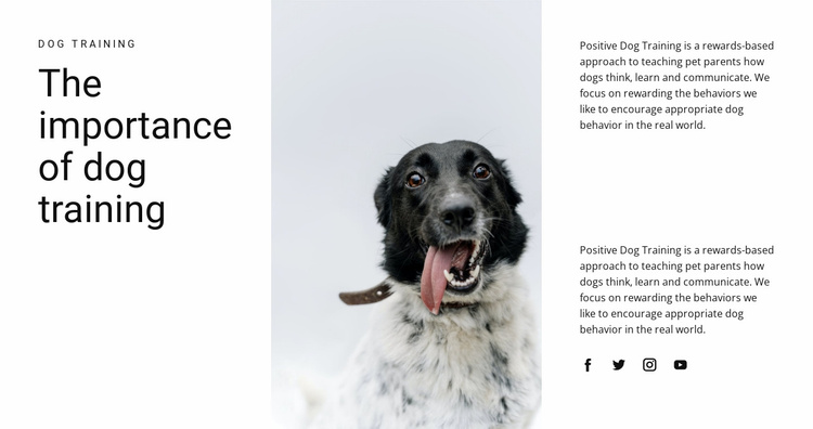 How to raise a dog Website Template