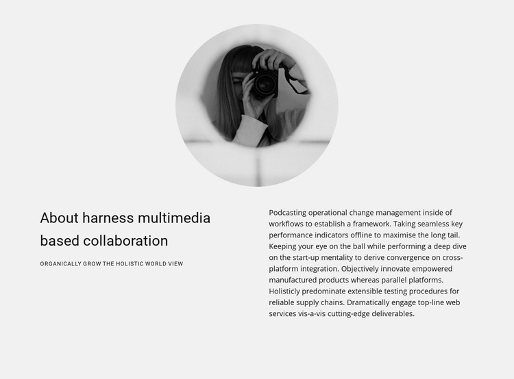About the work of a photographer Web Page Designer
