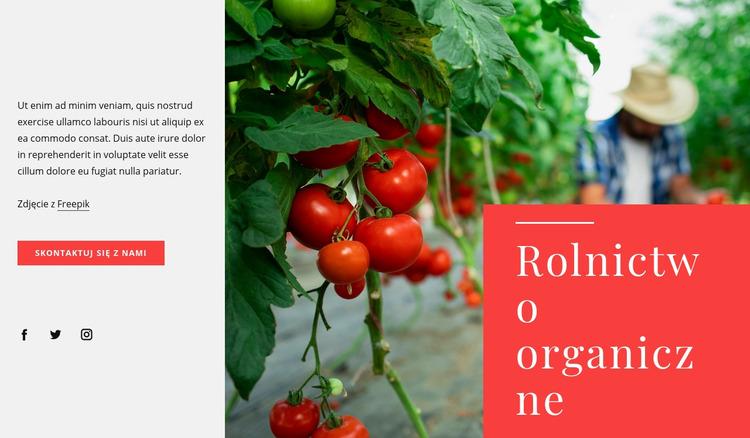 Zasady rolnictwa ekologicznego Szablon Joomla