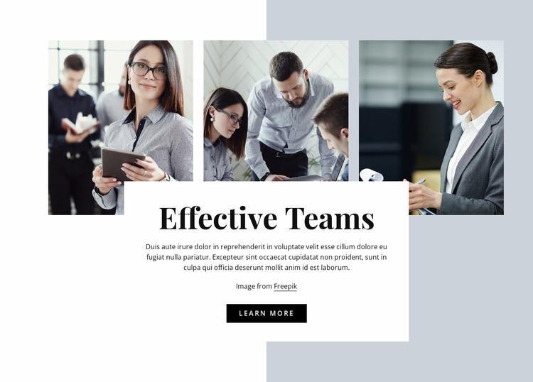 Effective team Website Mockup