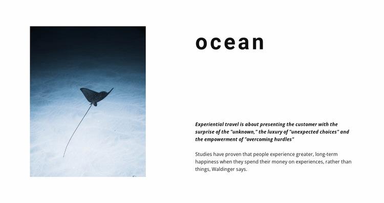 Incredible ocean life Website Builder