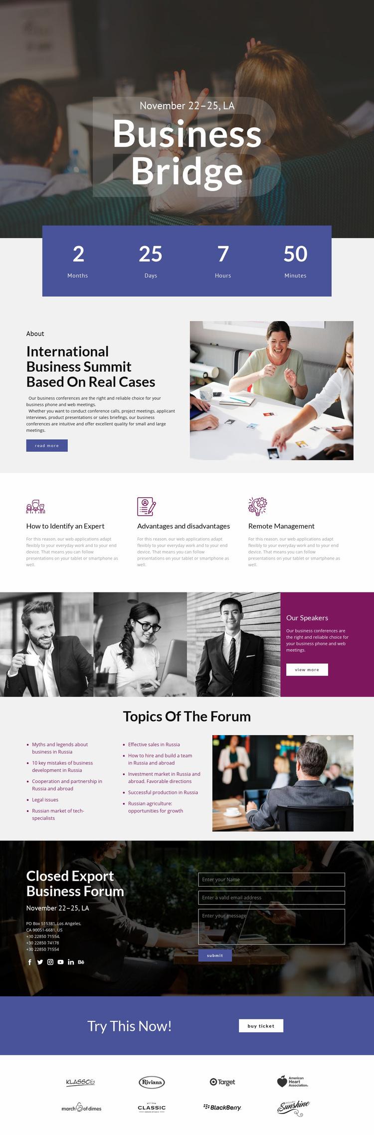 Business Bridge Web Page Design