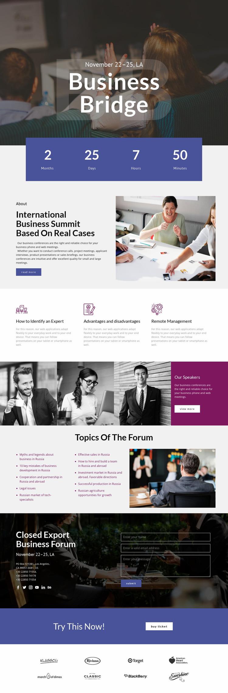 Business Bridge Website Mockup