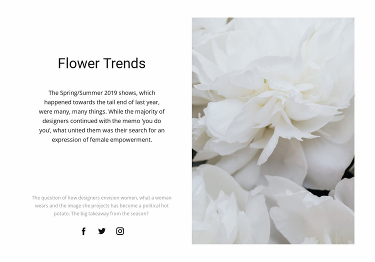 Peonies are fashionable Website Template