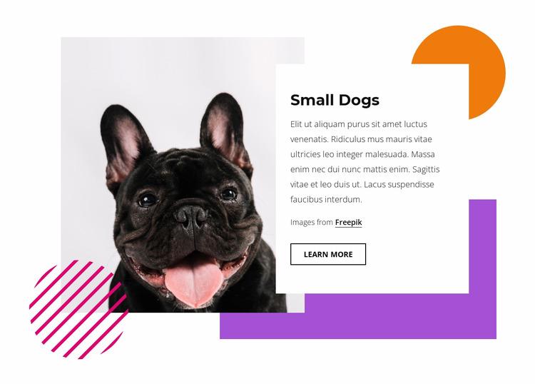 Pretty small dogs WordPress Website Builder