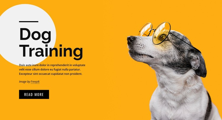 Training classes for pets of all ages Web Page Design