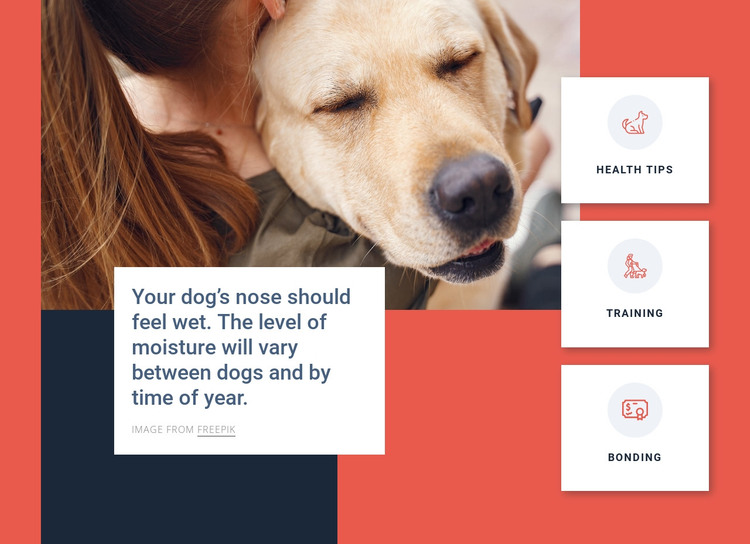 Dog care tips HTML Template