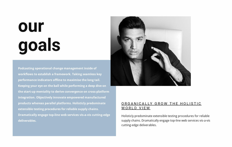 Our goal is your success Website Template