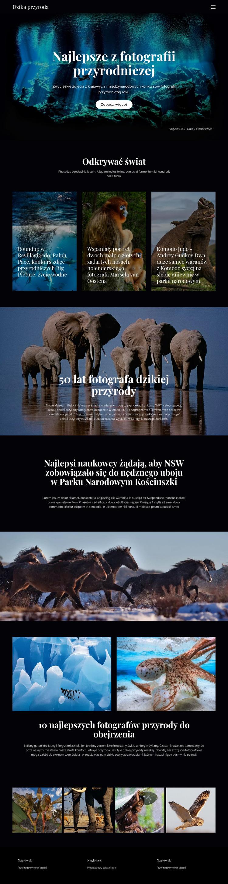 Dzika przyroda i przyroda Szablon witryny sieci Web