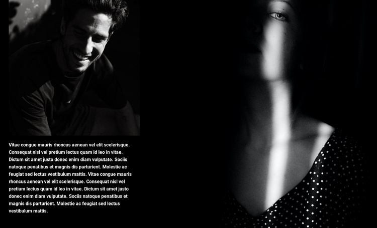 Exhibition of portraits Joomla Template