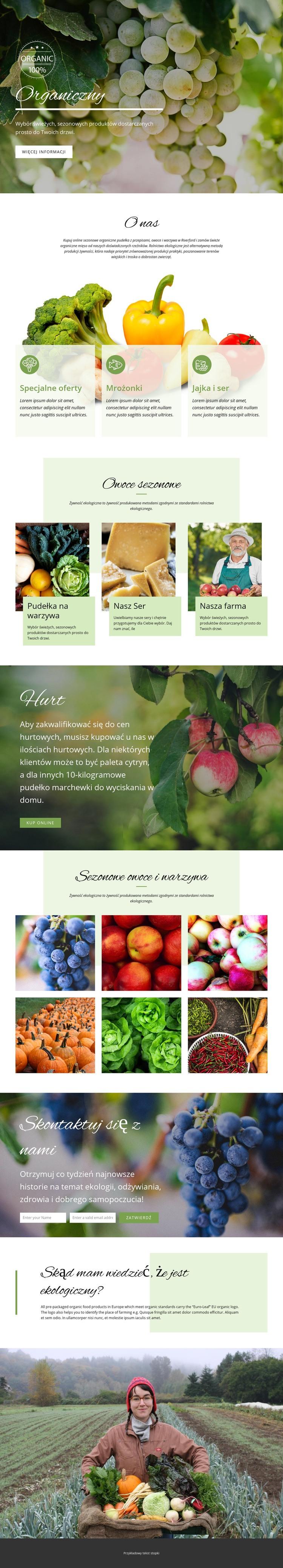 Zdrowsze z żywnością ekologiczną Szablon witryny sieci Web