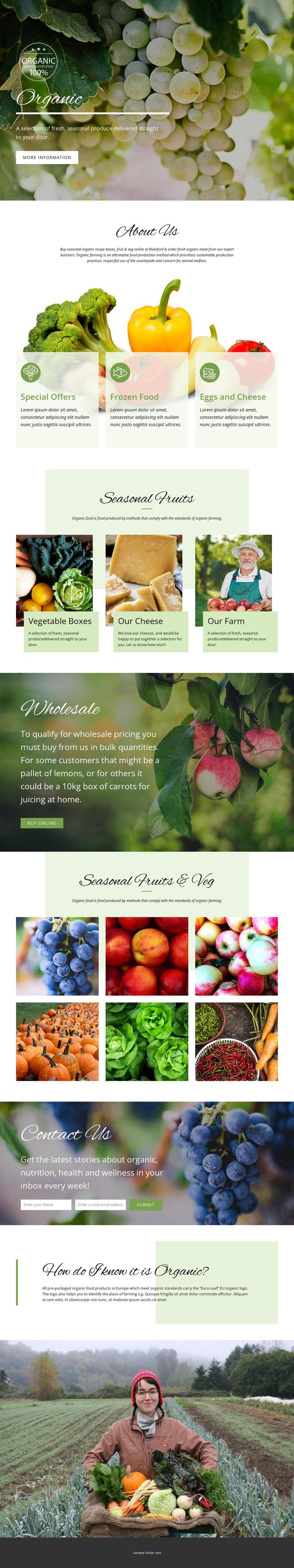 Healthier with organic food Web Design