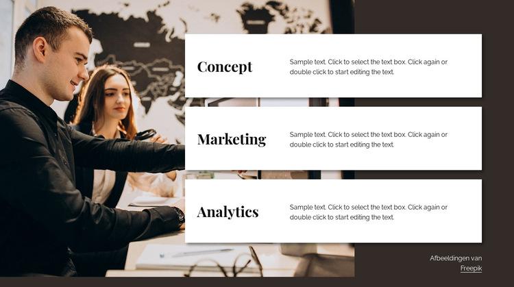 Analytics-adviesteam Website sjabloon