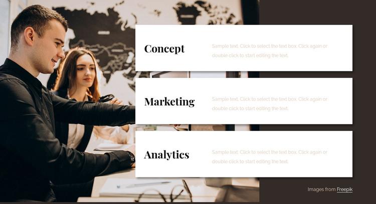 Analytics consulting team Web Design