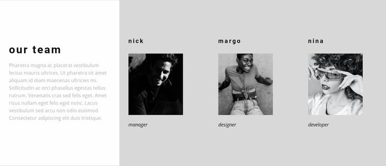 A team of true professionals Website Template