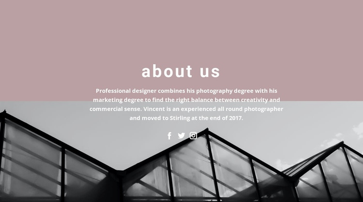 About company development Web Page Designer