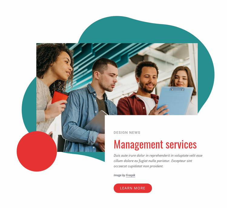 Management consulting company Landing Page