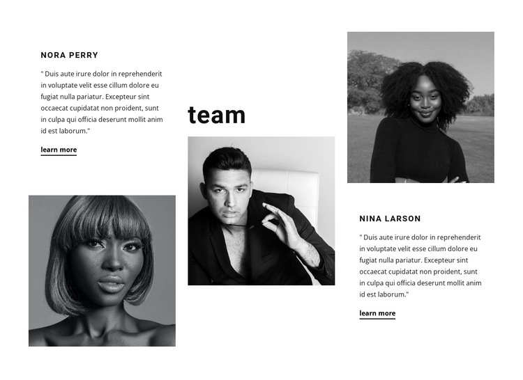 Opinions of company members HTML Template