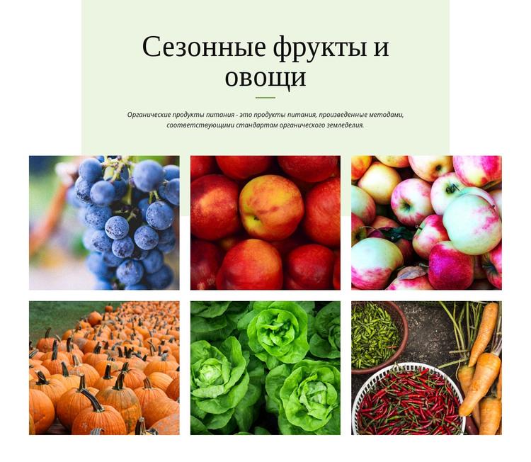 Сезонные фрукты и овощи HTML шаблон