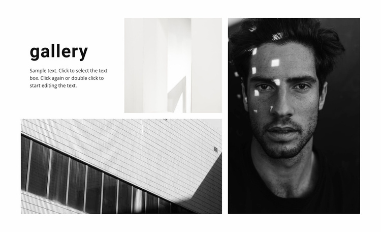 New gallery Website Template