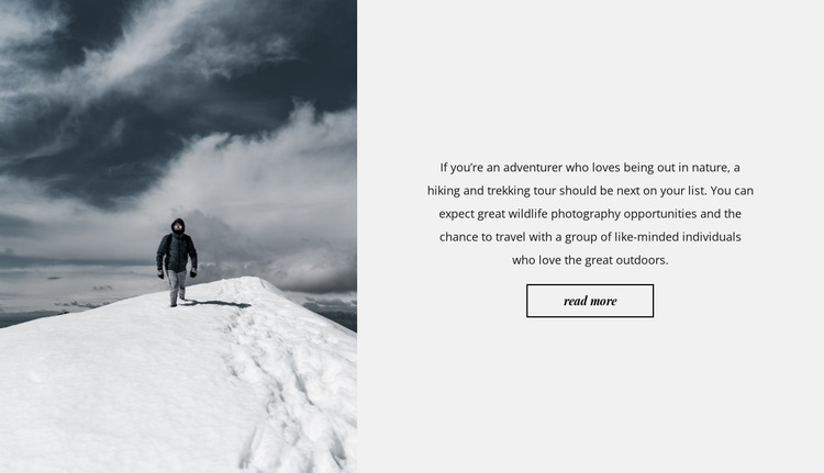 On snowy peaks Website Design