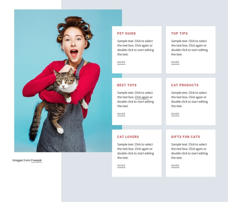 Cat guide WordPress Template