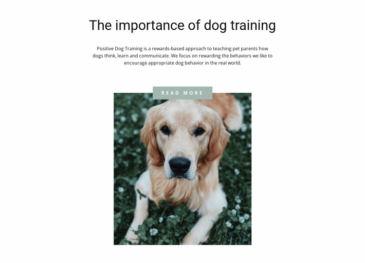 Your most loyal friend Website Template