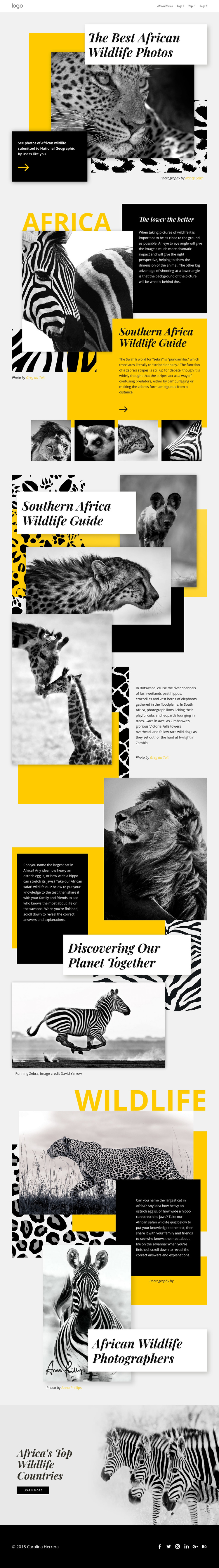 Best African Photos One Page Template
