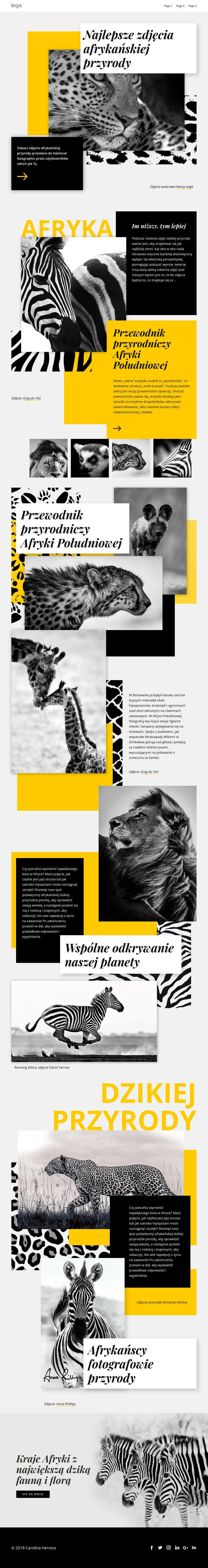 Najlepsze zdjęcia afrykańskie Szablon witryny sieci Web