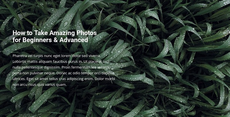 Title and text on a beautiful photo Static Site Generator