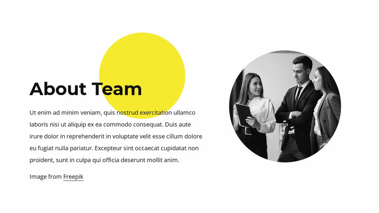 About our team Website Mockup
