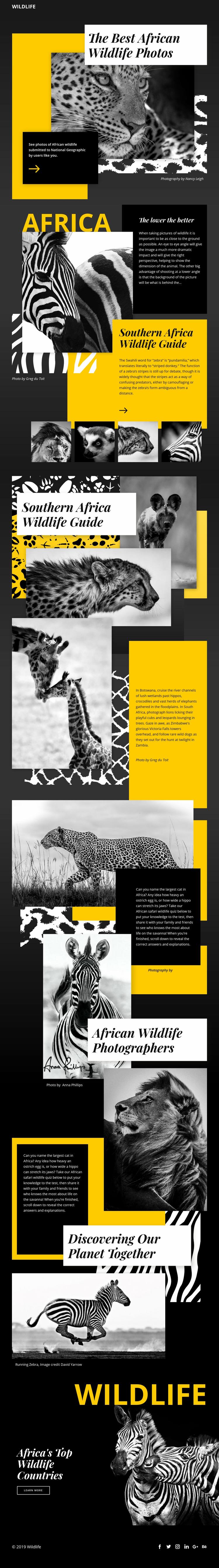Wildlife Photos Web Page Designer