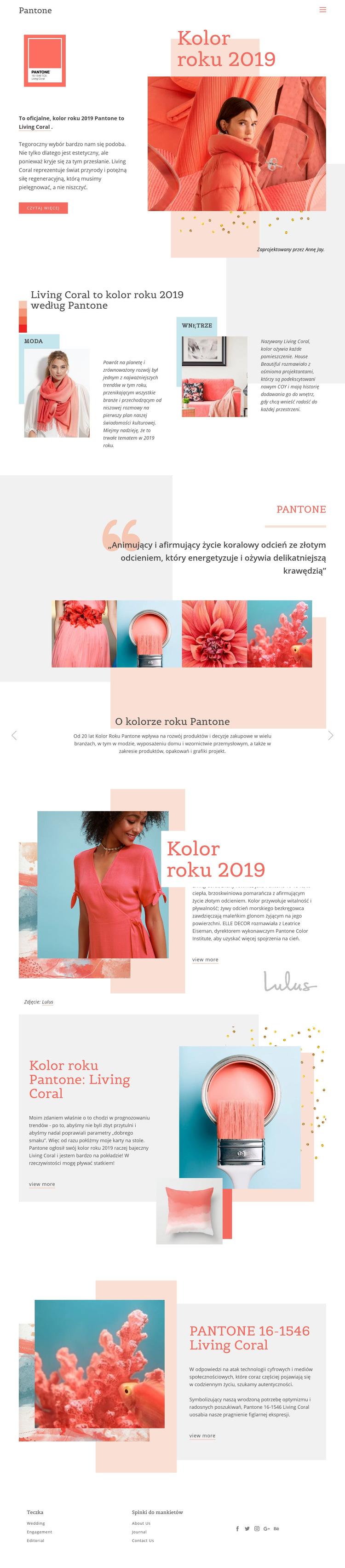 Kolor roku 2019 Szablon witryny sieci Web