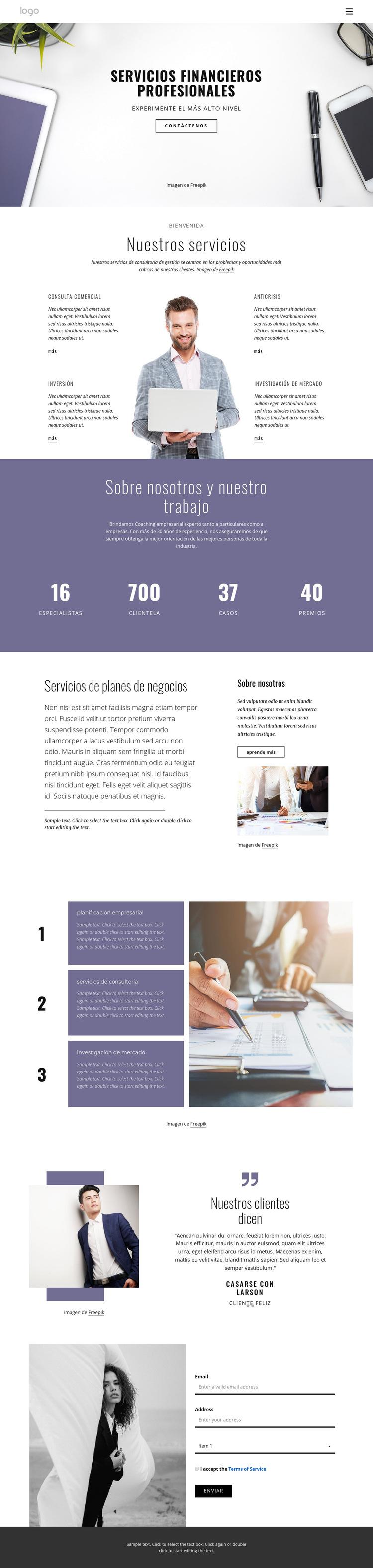 Servicios financieros profesionales Plantilla de sitio web