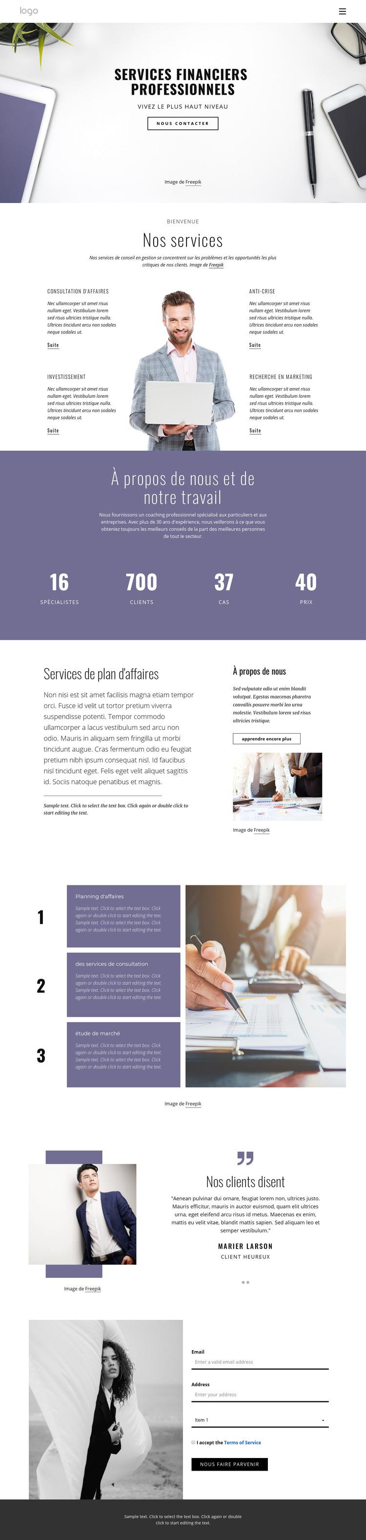 Services financiers professionnels Modèle de site Web