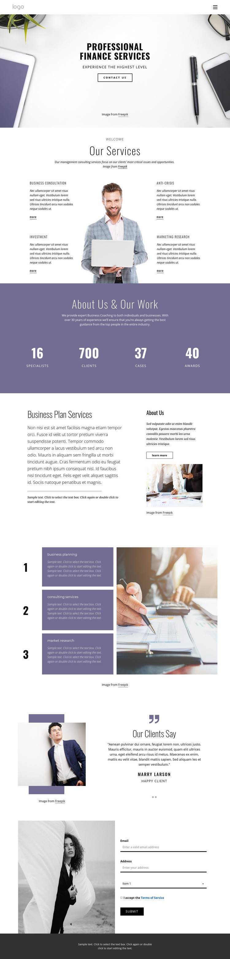 Professional finance services Web Page Design
