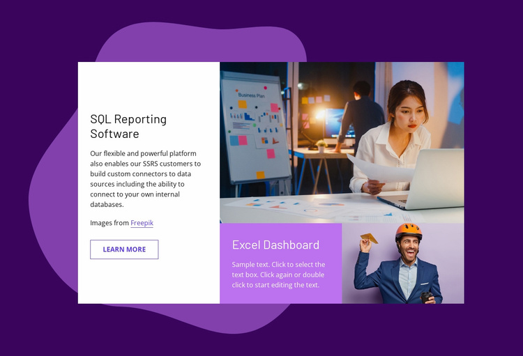 SQL reporting software Website Template