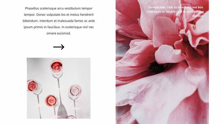 Production of rosé wine Website Template