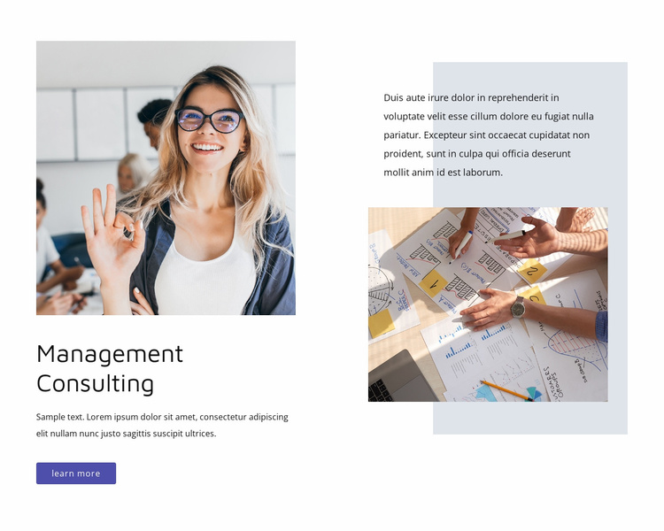 Management consulting Website Template