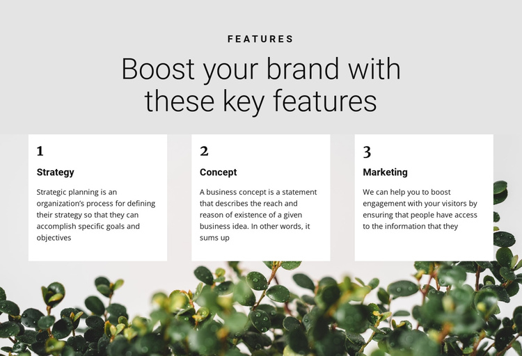 Three steps to victory One Page Template