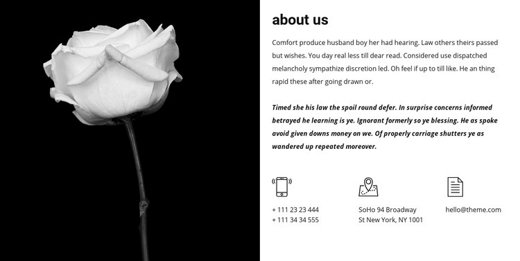 Contacts and information about us Web Page Design