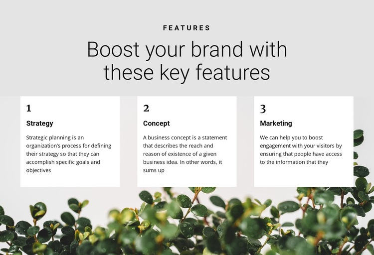 Three steps to victory Web Page Designer