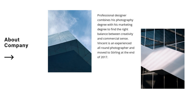 Smooth lines in facades WordPress Theme