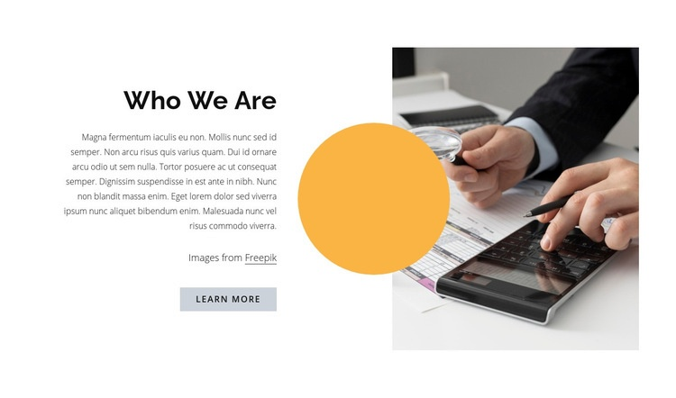 Cryptocurrency consulting consultant Web Page Design