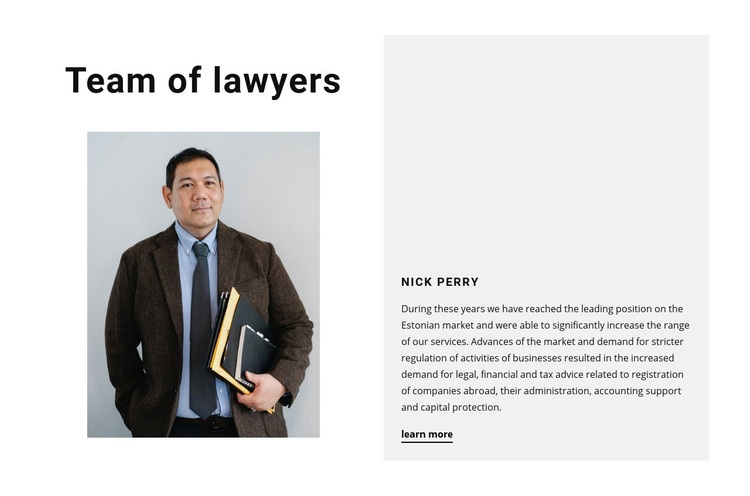 Team of lawyers Web Page Design