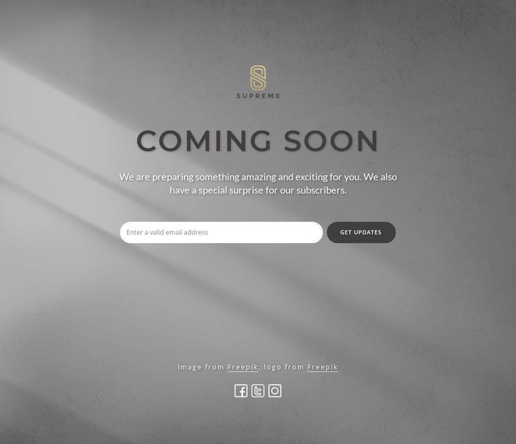 Coming soon block with logo WordPress Theme