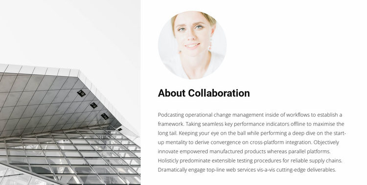 Cooperation with an architect Website Template