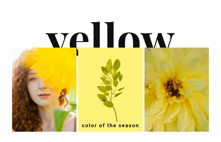Colors of the season Website Mockup