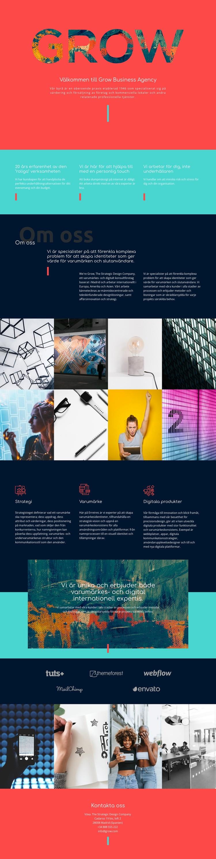 Utveckla ditt företag Webbplats mall